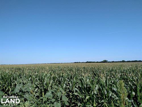 Burrton Irrigated 1/4 : Burrton : Harvey County : Kansas