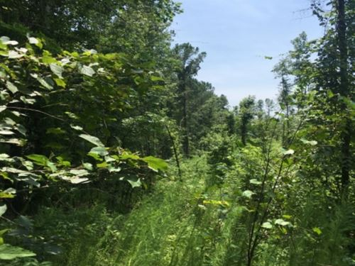 18 Acres In Holmes County In Durant : Durant : Holmes County : Mississippi