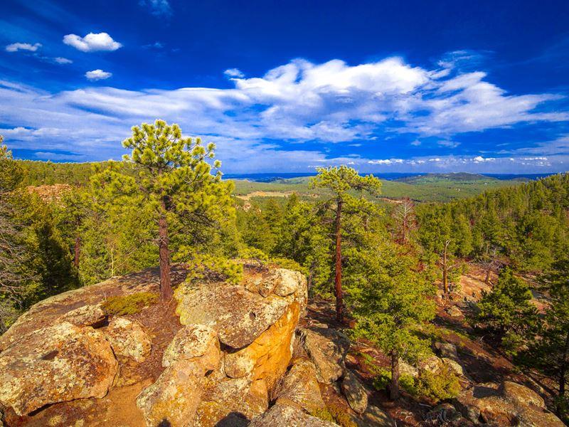 Conifer Mountain Vistas : Conifer : Jefferson County : Colorado