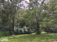 Gastonburg Farm House : Catherine : Wilcox County : Alabama