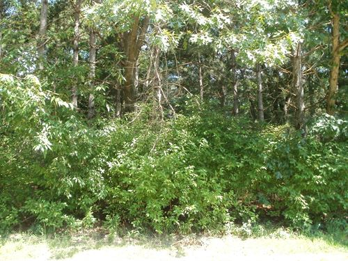 Vacant Land Bring Your Own Builder : Portage : Columbia County : Wisconsin