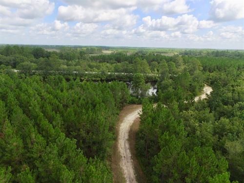 Clinch County Georgia Land for Sale : LANDFLIP