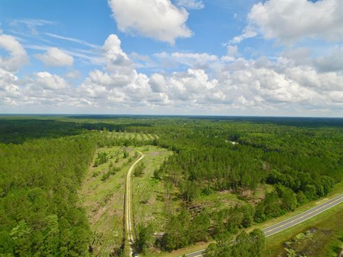 46+ Acres On Elim Church Rd : Hinesville : Long County : Georgia
