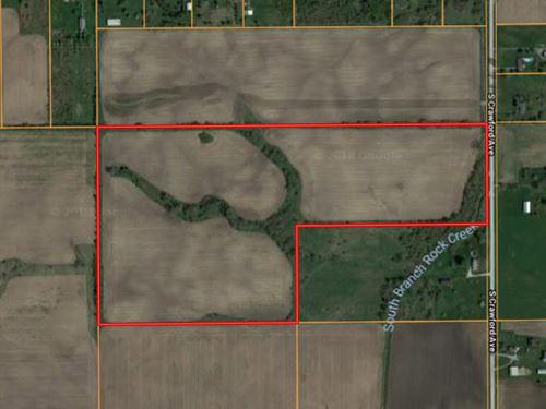Peotone 60 Acres : Peotone : Will County : Illinois