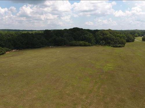 33.2 Beautiful Acres Of Land : Covington : Walton County : Georgia