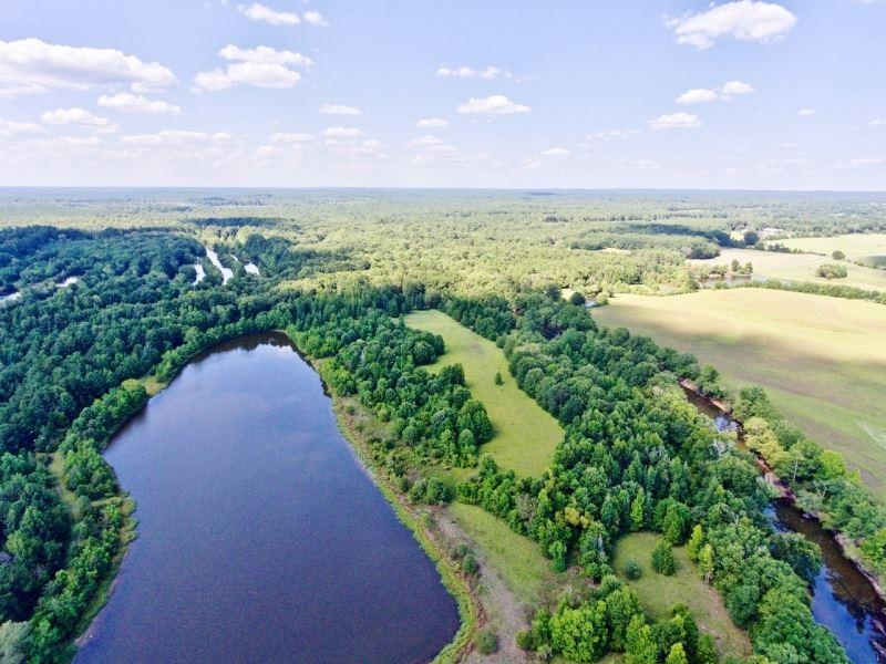 176 Acre Recreational Timber Re : Dixie Inn : Webster Parish : Louisiana