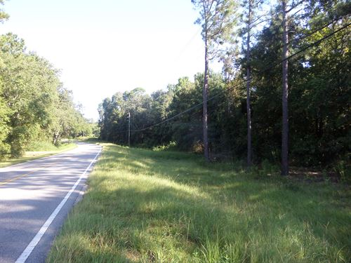 40 Acres Available, Tank Rd Comm : Jesup : Wayne County : Georgia
