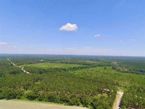 133.47 Acres Burke County, Ga : Waynesboro : Burke County : Georgia