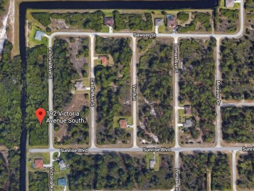 Beautiful Wooded Lot With Stream : Lehigh Acres : Lee County : Florida