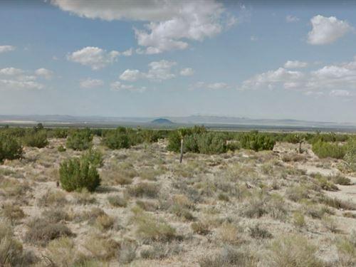 2.51 Acres In Llano, CA : Llano : Los Angeles County : California