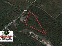 Reduced, 16.77 Acres of Hunting : Currie : Pender County : North Carolina
