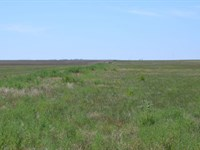 Schroeder Crp Land For Sale : Sterling : Logan County : Colorado