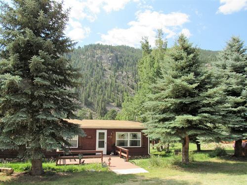 Poudre City Cabin : Bellvue : Larimer County : Colorado
