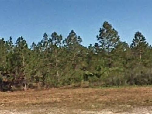 Polk County, Fl $7,500 Negotiable : Frostproof : Polk County : Florida