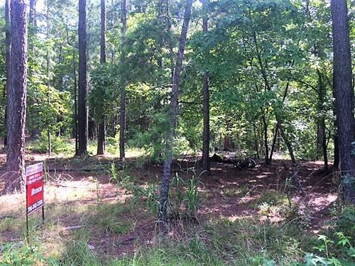 Wooded Lot - Build Your Dream Home : Greensboro : Greene County : Georgia