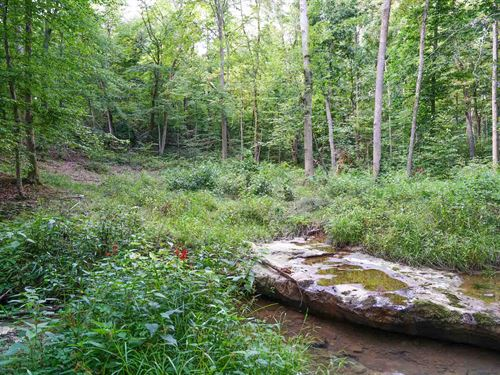 Sr 678 - 171 Acres : Rockbridge : Hocking County : Ohio