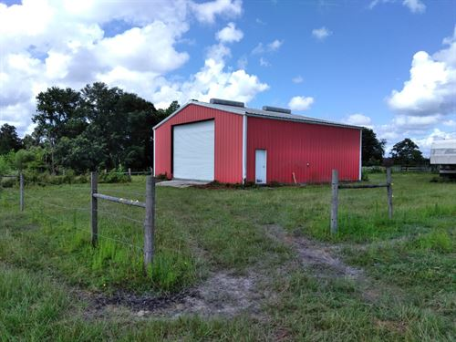 21 Acres On County Road 1474 : Hawthorne : Alachua County : Florida