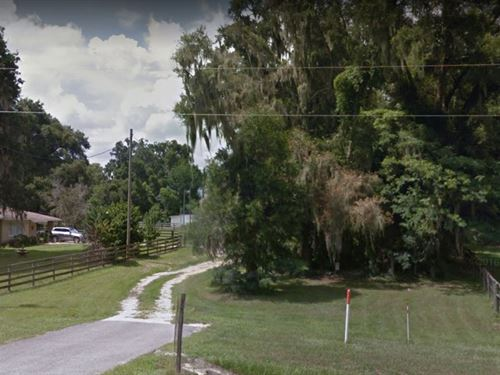 .64 Acres In Summerfield, FL : Summerfield : Marion County : Florida