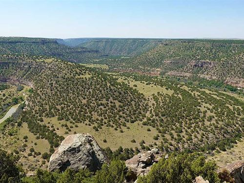 Twenty Hatchets Ranch : Springer : Colfax County : New Mexico