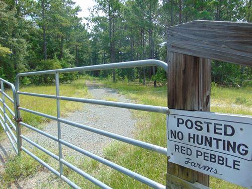 Big Timber, Big Creek, Improvements : Rupert : Taylor County : Georgia
