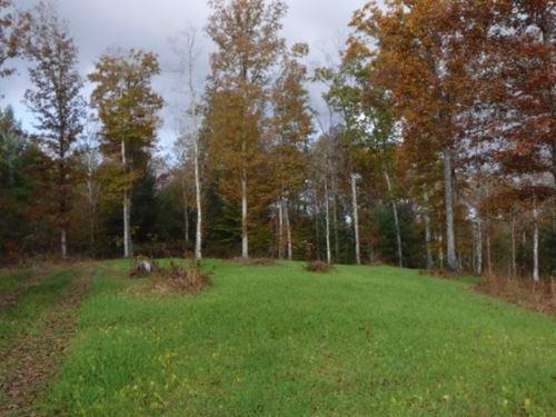251.98 Ac, Gas Wells, Great Hunting : Allardt : Fentress County : Tennessee