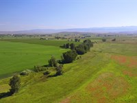 160+/- Acre Rock Creek Property : Haines : Baker County : Oregon
