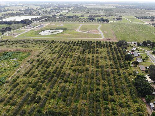 Hidden Lake Phase 3 & 4 : Haines City : Polk County : Florida