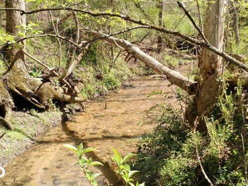 Wooded Clarkesville Tract : Clarkesville : Habersham County : Georgia