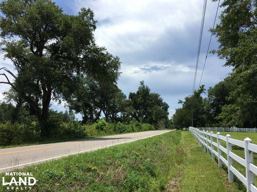 Cain Bay South 475 Acres : Summerville : Berkeley County : South Carolina