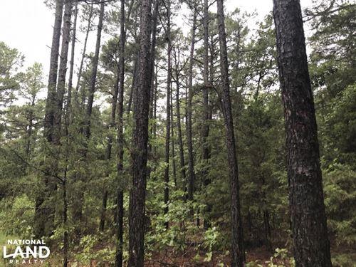 117 Acres Deer & Turkey Hunting : London : Pope County : Arkansas