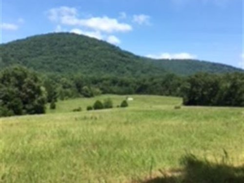 Large Hunting & Recreation Property : Hardy : Franklin County : Virginia