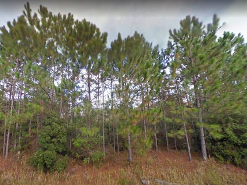 Taylor County, Fl $32,000 : Lamont : Taylor County : Florida