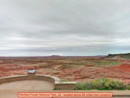 7 Acre Gem Off The Grid : Holbrook : Navajo County : Arizona