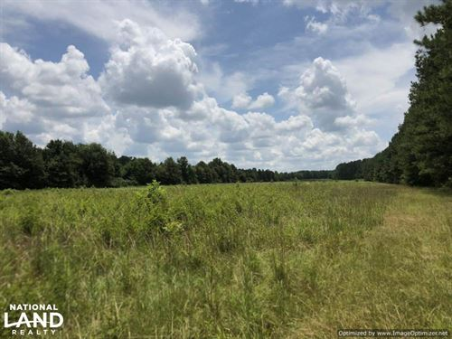 Recreational Tract & Timber Land : McCool : Attala County : Mississippi