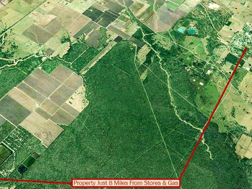 Secluded Texas Lot : Guy : Brazoria County : Texas