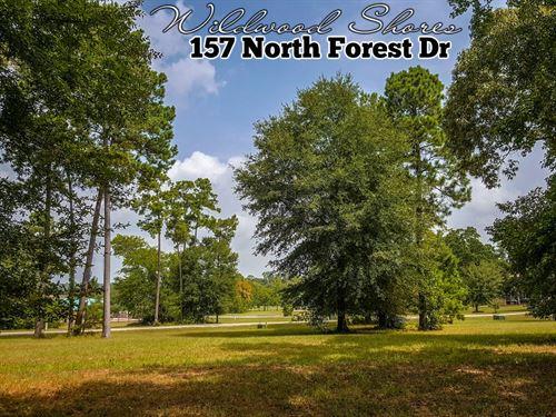 .17 Acres In Walker County : Huntsville : Walker County : Texas