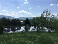 391.63 Acres Craigs Creek : New Castle : Craig County : Virginia