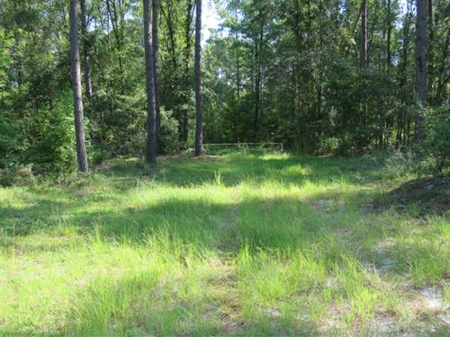 Washie Pelham Tract : Walterboro : Colleton County : South Carolina