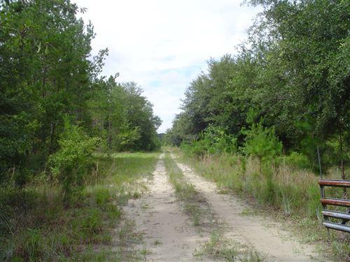 Oswald Woodsville : Ridgeland : Jasper County : South Carolina