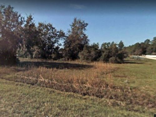 1.01 Acres In Crescent City, FL : Crescent City : Putnam County : Florida