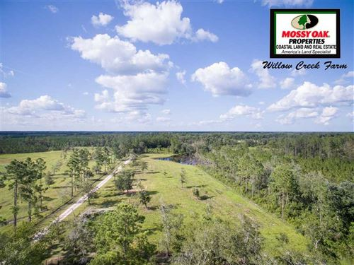 142 Acre Willow Creek Farm Land : Folkston : Charlton County : Georgia
