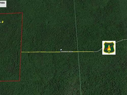 160 Acres For Sale in Fairdealing : Fairdealing : Ripley County : Missouri