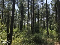 Hinds County Recreational Paradise : Terry : Hinds County : Mississippi