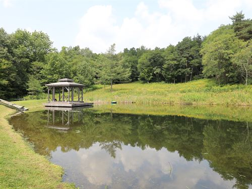 Secluded Pond On Wooded Acreage : Deruyter : Madison County : New York