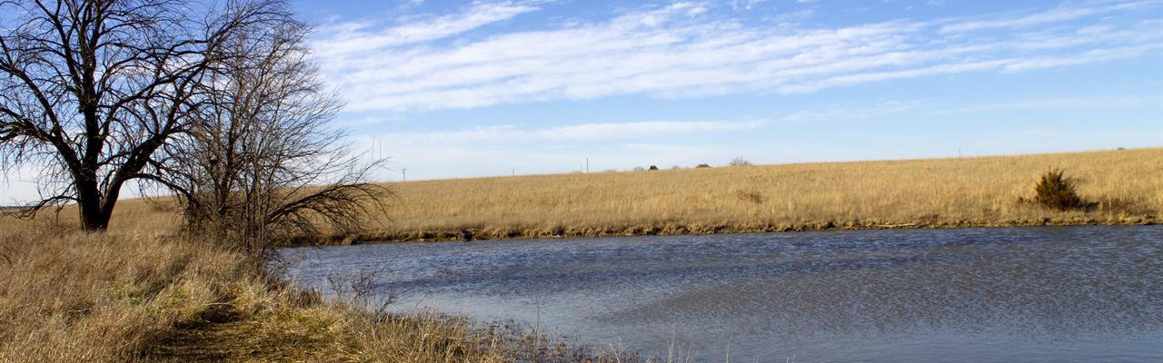 Magnificent Meadows Of Kansas : Niotaze : Chautauqua County : Kansas