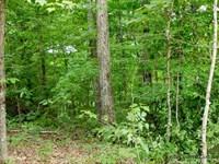 Kentucky Buck Country Land : Monticello : Wayne County : Kentucky