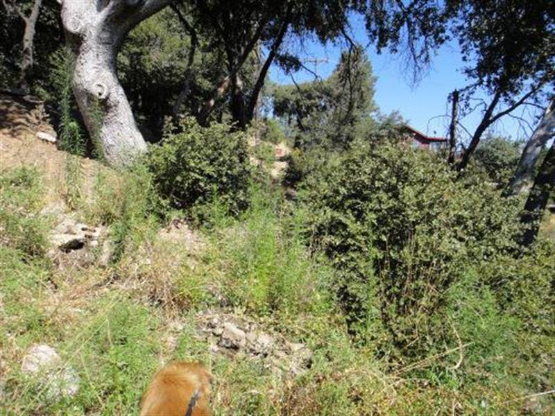 Overlooks Lake Cuyamaca & Mountains : Julian : San Diego County : California