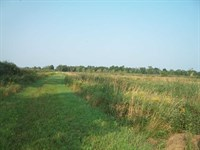 56 Acres of Mature Bucks And Ducks : Waupaca : Waupaca County : Wisconsin