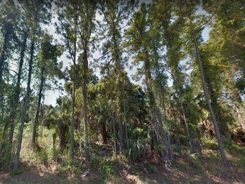 Sarasota County, Fl $15,000 : North Port : Sarasota County : Florida