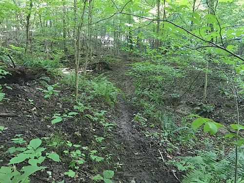 Cr 3, 27 Acres, Coshocton County : Warsaw : Coshocton County : Ohio